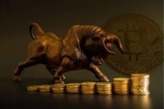 Bitcoin,  Boğa Döngüsünde mi ?