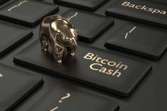 Bitcoin Cash Fiyat Analizi 16.05.2019