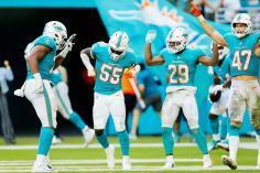 Litecoin Miami Dolphins Takımının Resmi Sponsoru Oldu