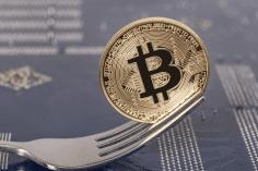 Kripto Paralardaki Fork (Çatallanma) Nedir?