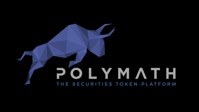 polimath (poly) nedir?