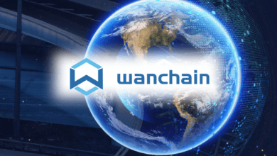 wanchain (wan) coin nedir?