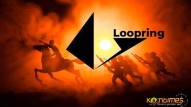 loopring nedir?