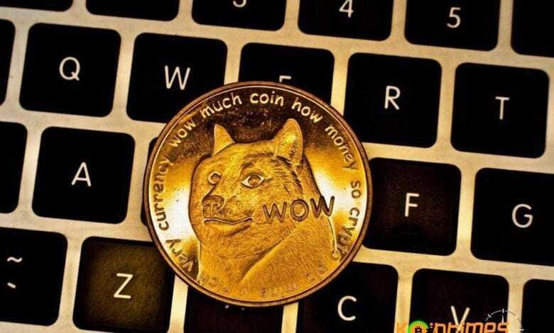 doge'nin yüzde 27'si elon musk'ın elinde olduğu i̇ddia edildi! 1