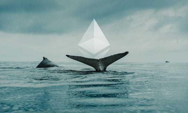 balinalar dev eth hareketine başladılar