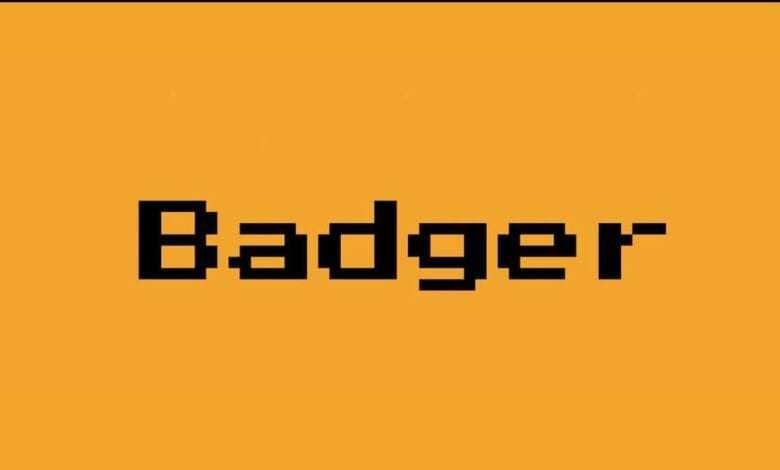 badger dao artık binance'de i̇şlem görecek, fiyatı ne kadar 1