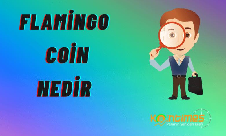 flamingo coin nedir flamingo coin yorum ve grafiği