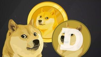 dogecoin en büyük 5'inci birim oldu, fiyatları yükseldi 8