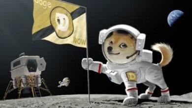 spacex, doge'yi uzaya götürecek, fiyat hareketlendi 2
