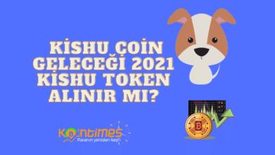 kishu coin geleceği 2021, kishu token alınır mı? 5