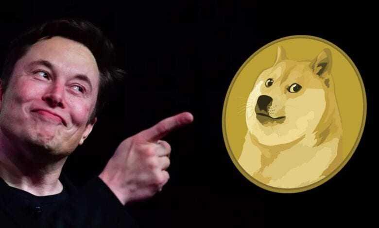 elon musk'tan şaşırtan sözler: doge, bitcoin'i bile sollayabilir 1