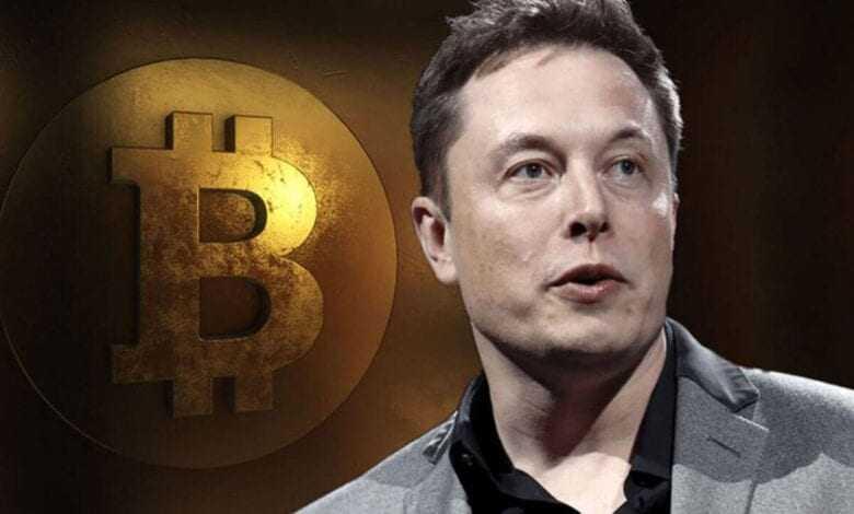 elon musk niçin bitcoin yerine doge tercih ettiğini açıkladı 1