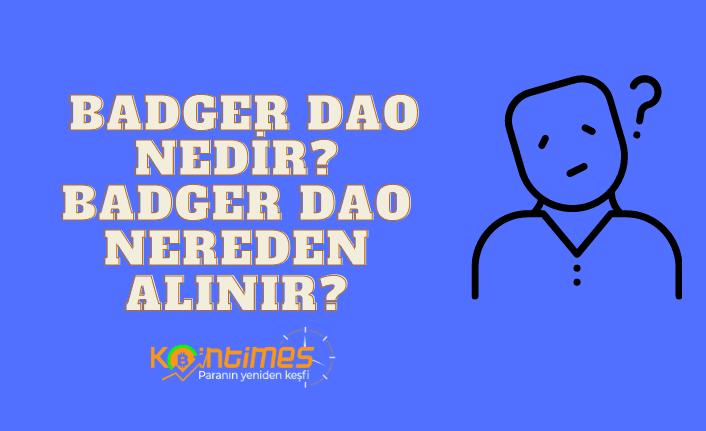 badger dao nedir? badger dao yorum ve grafiği 1