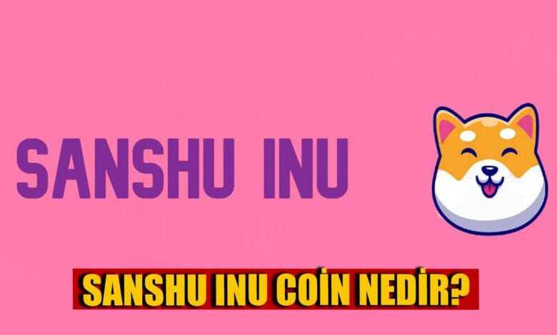 sanshu i̇nu coin nedir?, sanshu i̇nu geleceği ve yorumları 1