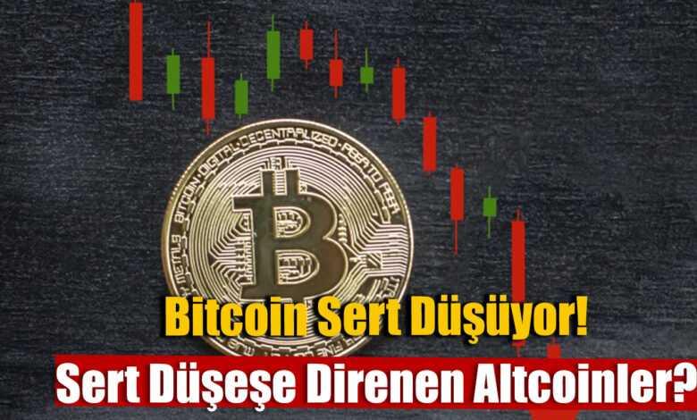 bitcoin' in büyük düzeltme hareketine karşı ayakta kalan üç altcoin 1
