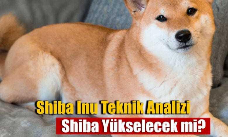 shiba inu teknik analiz: düşen trendi kırdı! 14 haziran shiba yorumları 1