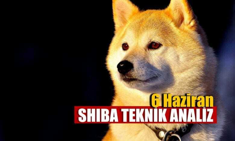 shiba teknik analizi 6 haziran 2021 1