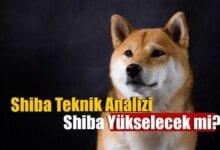 shiba inu teknik analiz: shib üçgeni kırdı, sıradaki hedefi ne? 6