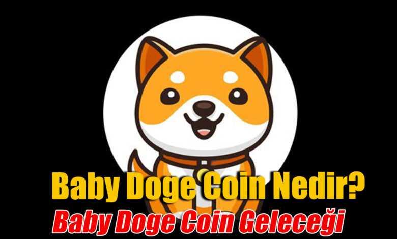 baby doge coin nedir, baby doge geleceği ve yorumu 1