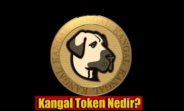kangal token nedir, kangal token nereden alınır? 1